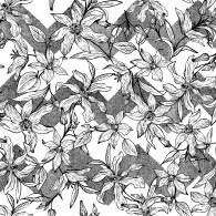 Chevron Lily