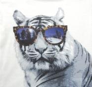 Gymboree Boys-Tiger
